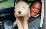 rhyne-howard-partners-auto-insurance-company