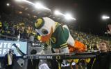 ducks-jump-no-3-in-latest-ap-poll