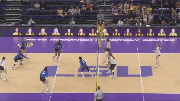 kentucky-volleyball-sweeps-lsu